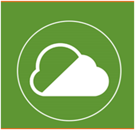 An image of the Clean Air Zone symbol of a cloud in a circle